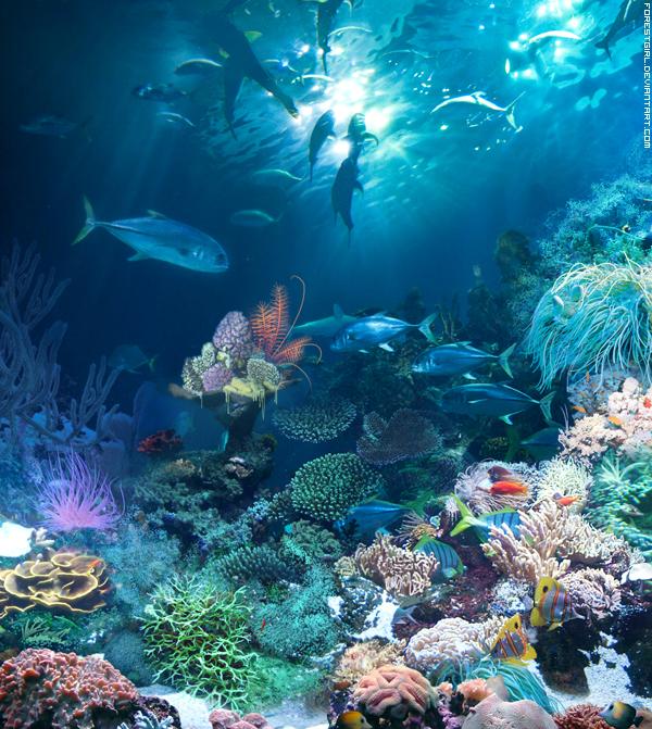 Подводный мир: предпросмотр
