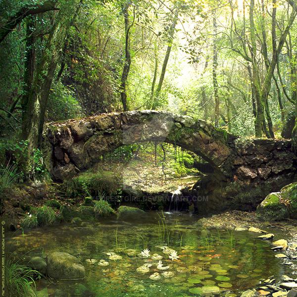 https://img00.deviantart.net/3328/i/2015/122/5/3/the_forest_pond_by_forestgirl-d2pp2d0.jpg