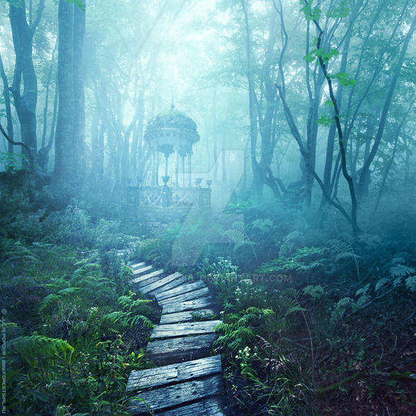 Wonderland by ForestGirl