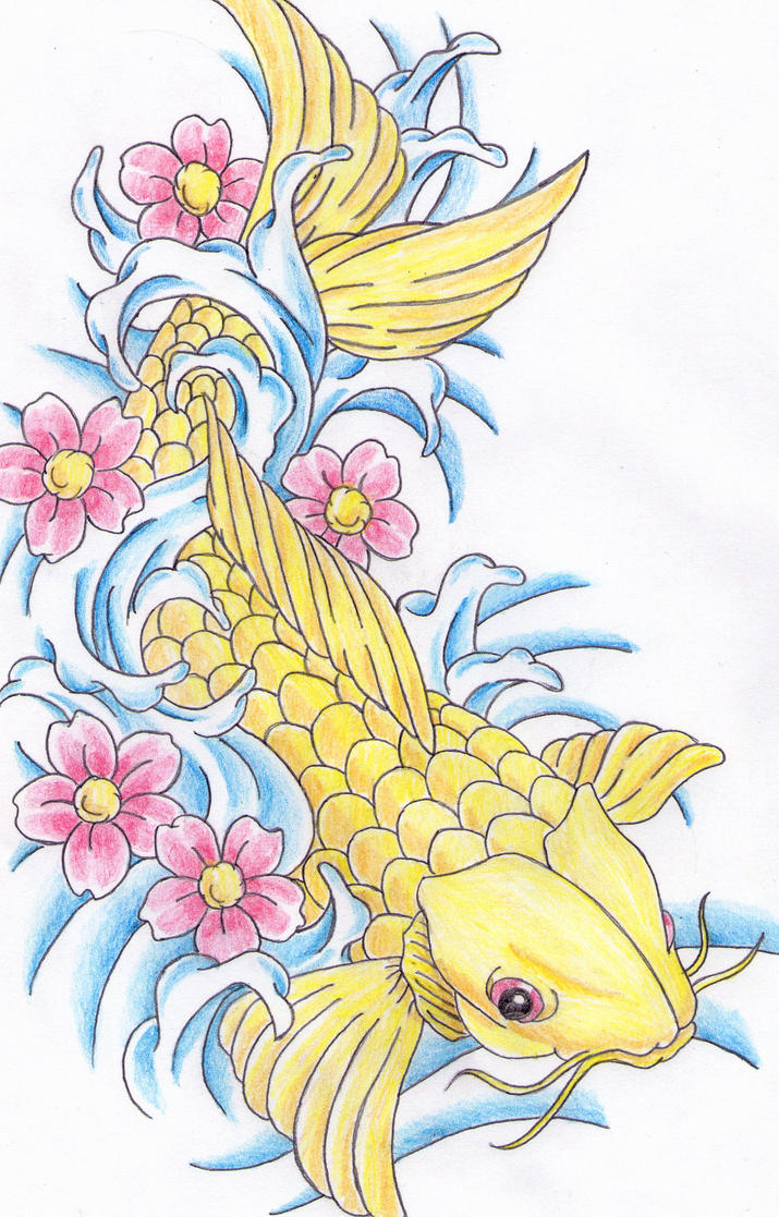 Two koi fish drawing for Koi fish information