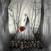 The Bride by butterscotchbob