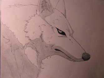 Wolf's Rain - Kiba by pokemaniac34