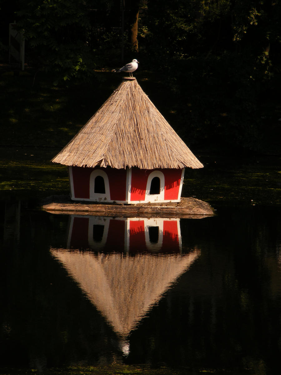 house on water and bird by rockmylife