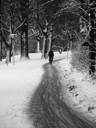 biker in winter by rockmylife