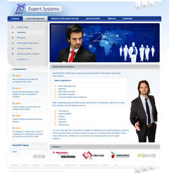 Expert Systems Web Interface by mohsin1983