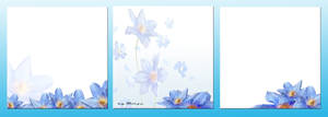 Collection of Three-Blue