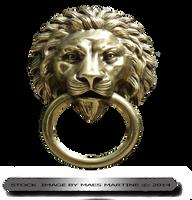Lion Door Ornament by M10tje