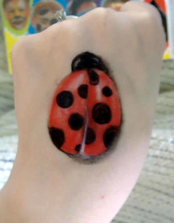 Pictures Of The Largest Ladybug 45
