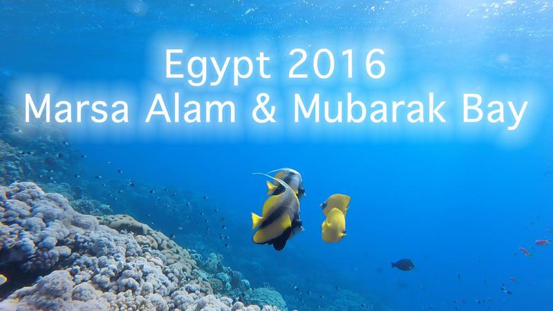 [Bild: egypt_2016__marsa_alam_and_mubarak_bay__...abl63a.jpg]