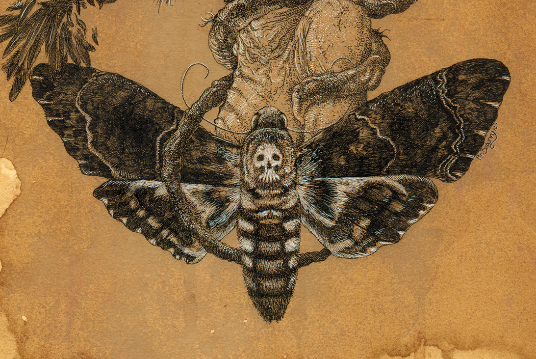 an argument of the moth significance in the death of the moth and death of a moth The meaning of the moth as a spirit guide others view the moth as a symbol of death or a the moth spirit guide is here to help guide you.
