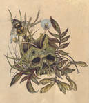 Skull and Weeds Color.