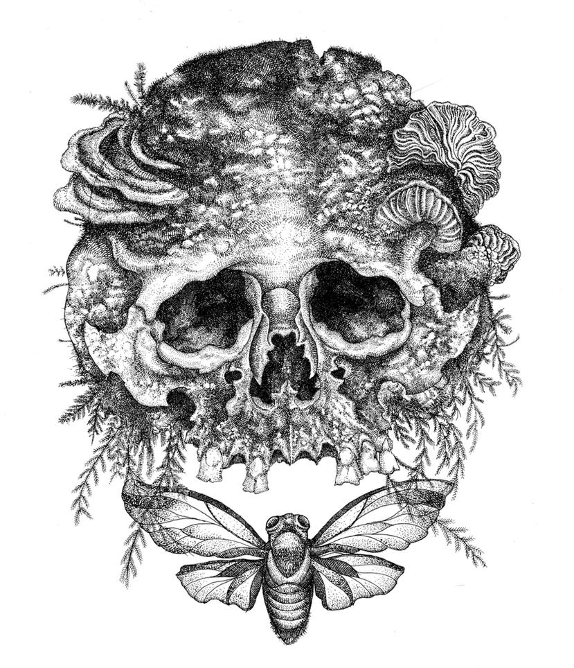Skull with Moss. by urielstempest