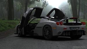 Ferrari Enzo Xtreme edition