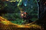 The magic of light. by starsareforever