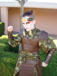 Kyoshi Warrior Sokka