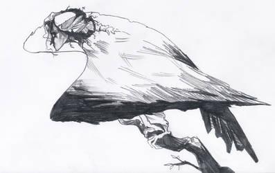 Harpy by ShotzgoBoom