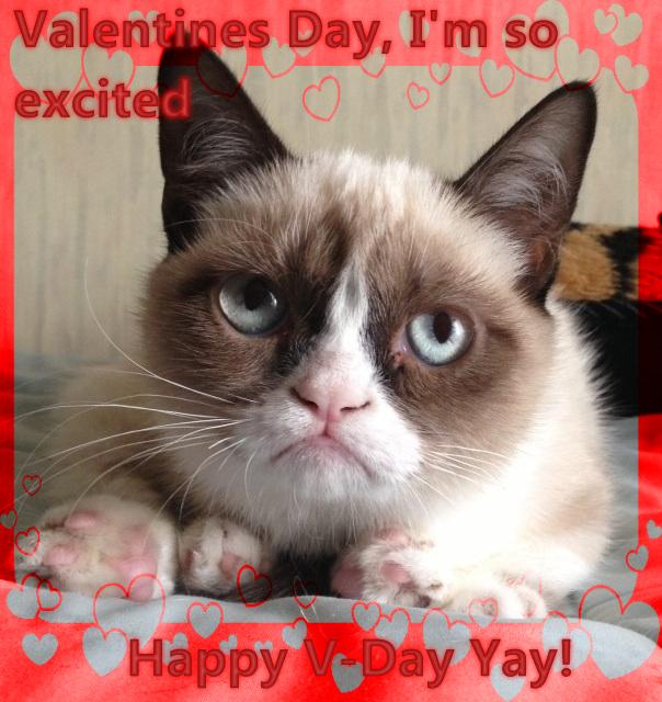 Have a Grumpy V-Day by SailorTrekkie92