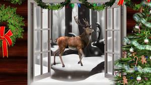 Christmas Wallpaper by SailorTrekkie92