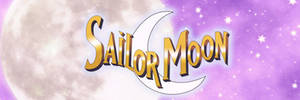 Sailor Moon (DIC) Twitter Banner by SailorTrekkie92