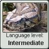 Parseltongue Language Stamp Level: intermediate by SailorTrekkie92