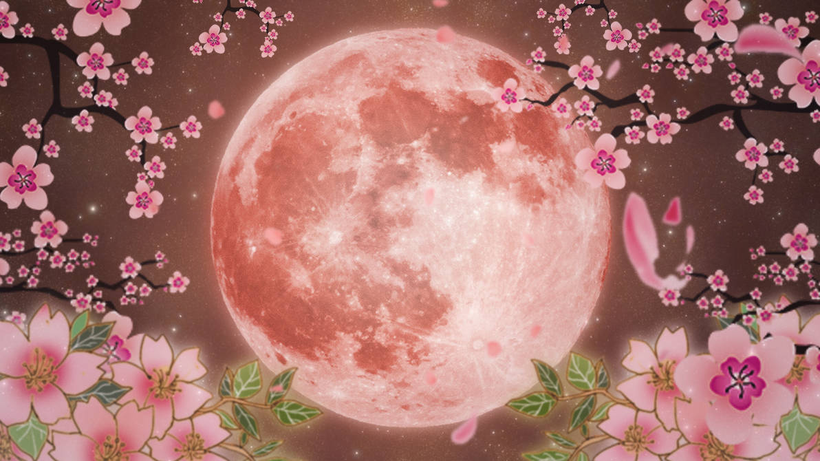 Flower Moon Wallpaper