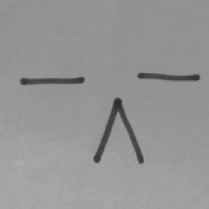 Super-Crazy-Weirdo's Profile Picture