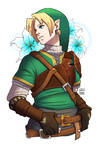 Link again... with color this time