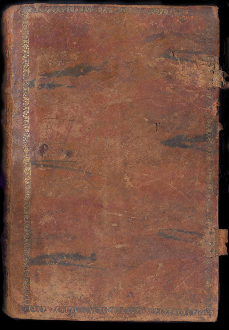 Leather book texture 2 by Tsabo6