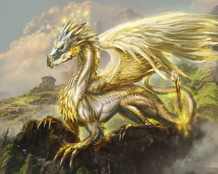 Order dragon by Tsabo6