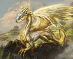 Order dragon