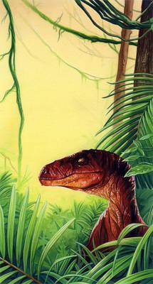 Raptor in the bush