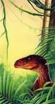 Raptor in the bush by roberthendrickson