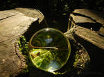 Glass sphere on stump in a forest