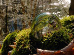 Glass sphere on moss above a river