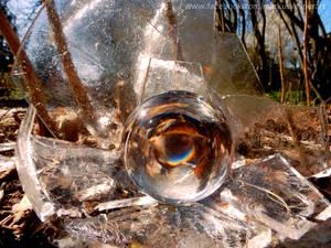 Icy nest
