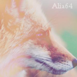 Alia64's Profile Picture