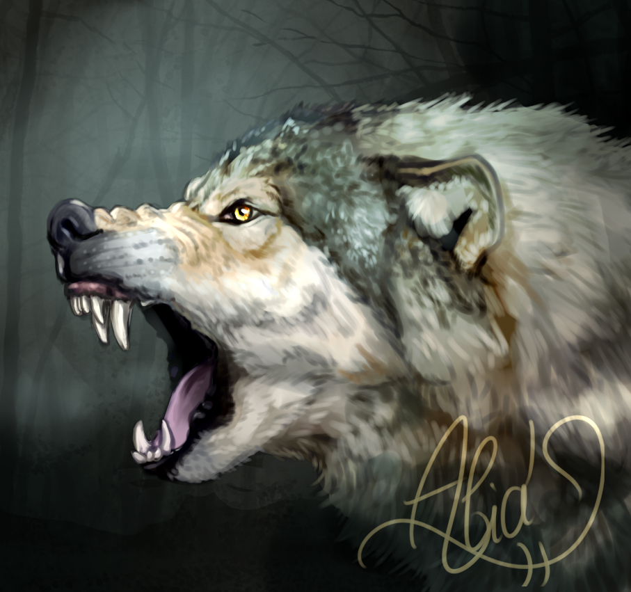 The big bad wolf by Alia64
