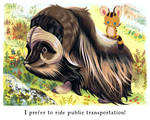 Tigerbuttah and the Musk Ox