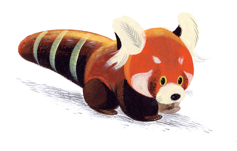 Red Panda B9 by Pocketowl