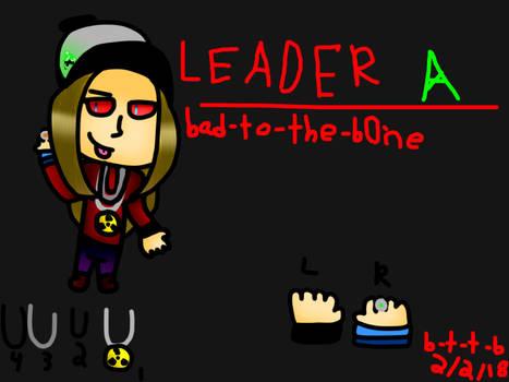 .:Team Acidity's Leader:.