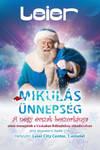 Company Santa Claus Xmas flyer