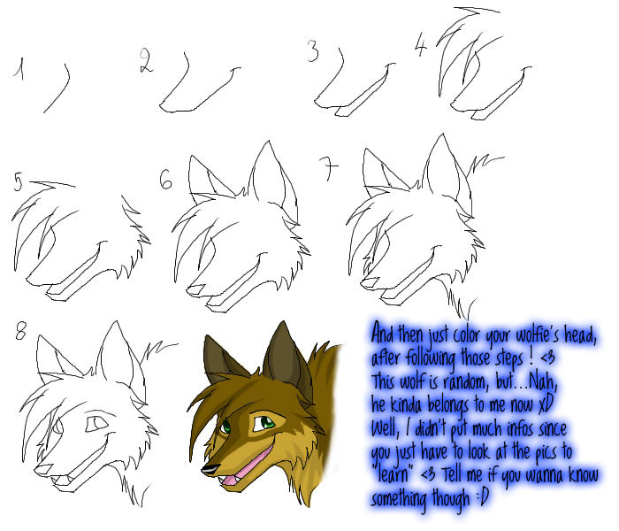 Anthro Wolf Tutorial Wolf Head Tutorial by Lvdragon