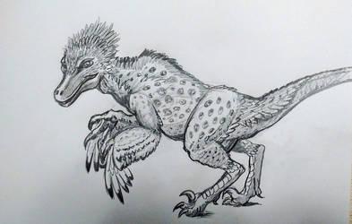 Feathered Raptor
