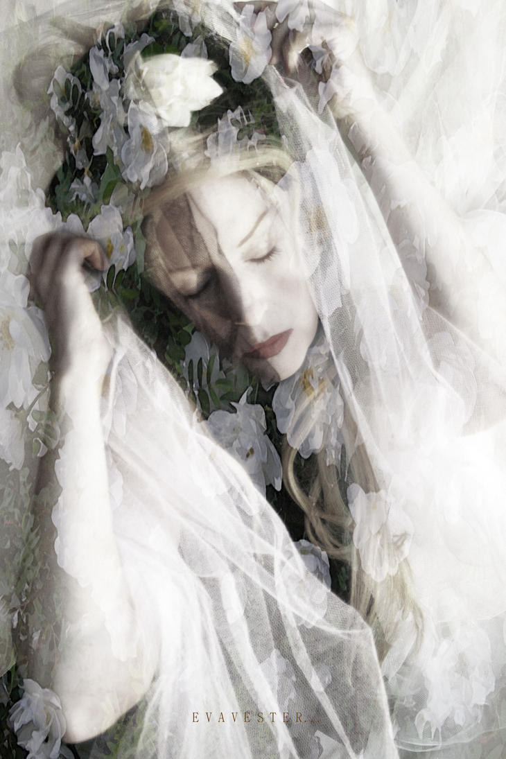 Sleeping Beauty... by EVAVESTER