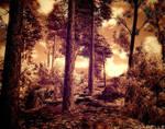 Lesna rzeczywistosc by IsabelleAuditore