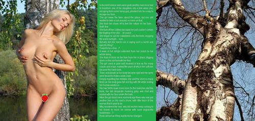 Tree Tf Story Deviantart