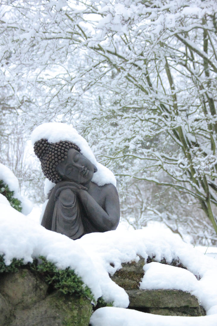 Buddha Cold by RixResources