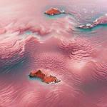 Rose Archipelago