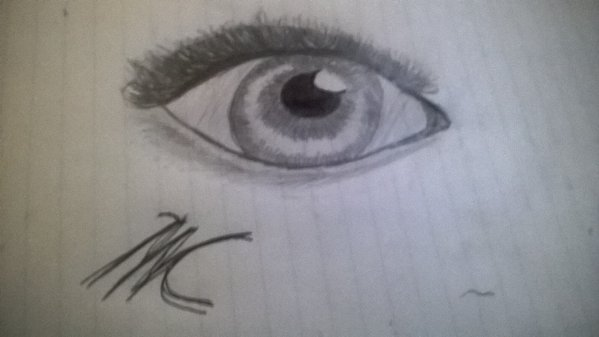Realistic Eye by Raining-cats-and-dog