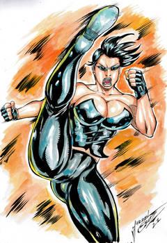 Niki Ninja- new commission
